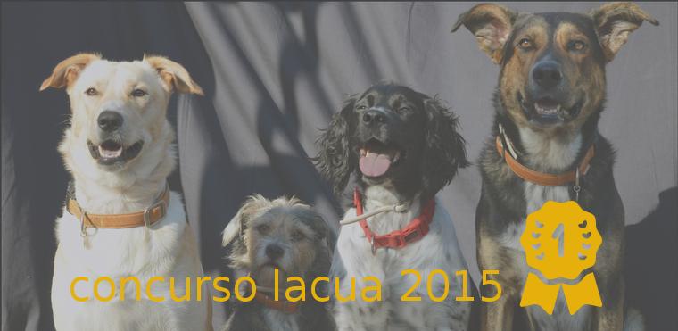 GANADORES DEL CONCURSO LACUA 2015