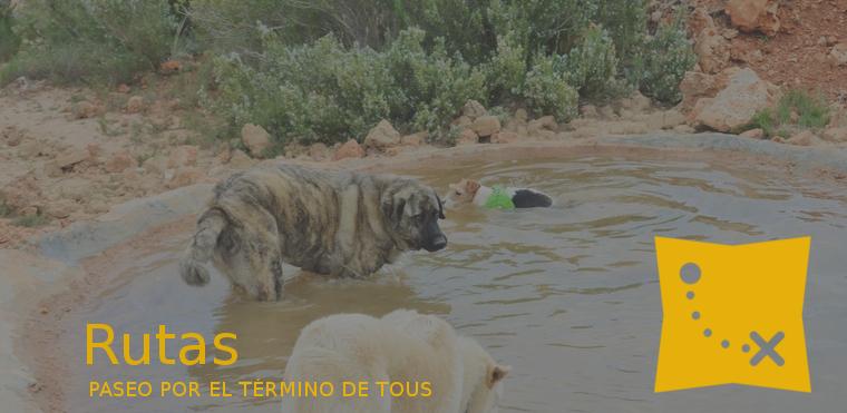 PASEO POR EL TÉRMINO DE TOUS